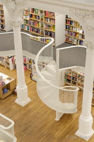 Libraria Carturesti - Carusel